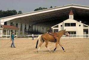 Gainesville Equestrian Center Courtesy of GA Dept of Economic Development